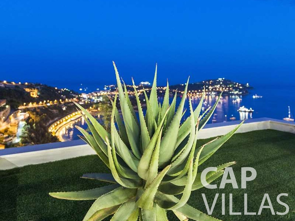 holiday house for sale villefranche succulent