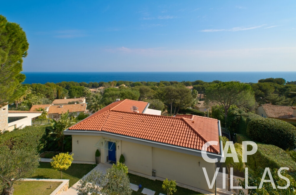 villa for sale cap ferrat aerial view