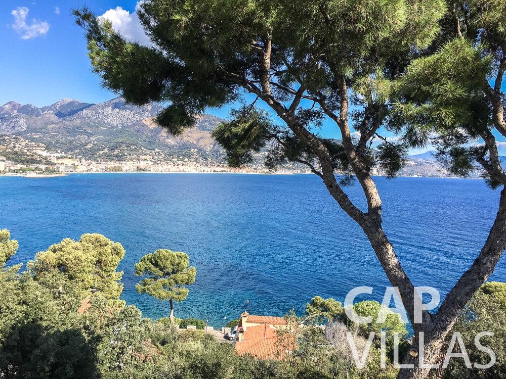 rent Villa Olive cap martin roquebrune sea view
