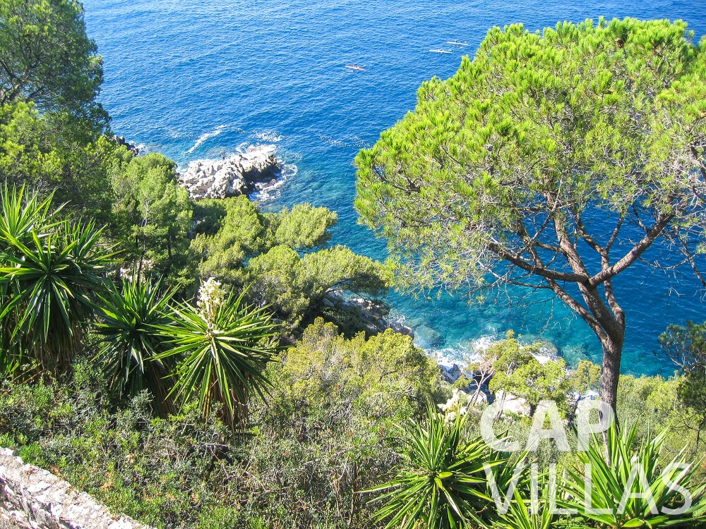 rent Villa Verbena cap ferrat sea view