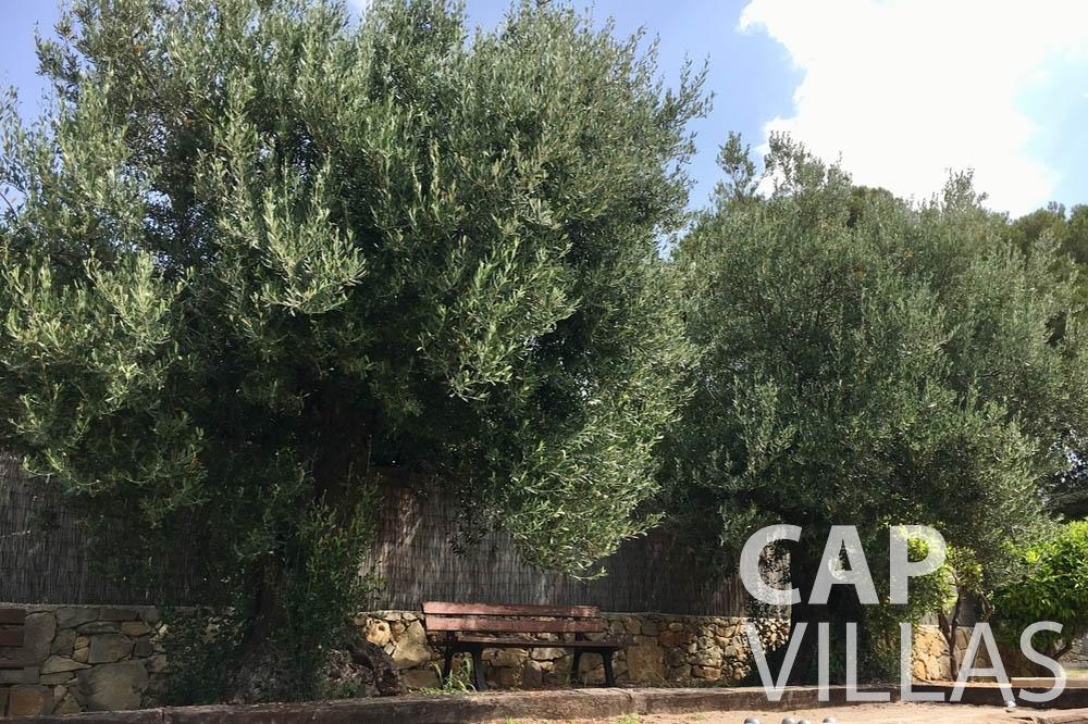 Villa Hortensia for rent roquebrune cap martin hortensia trees