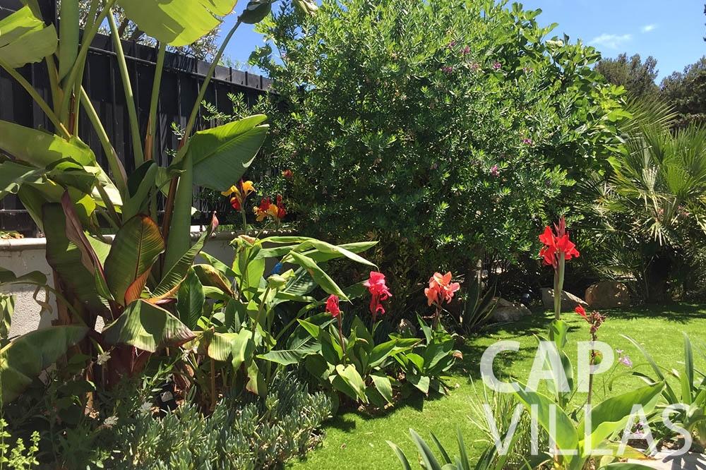 Villa Eze Sur Mer for let eze sur mer laurence garden