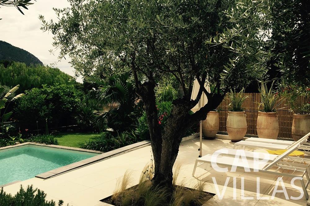 Villa Eze Sur Mer for let eze sur mer laurence terrace swimming pool