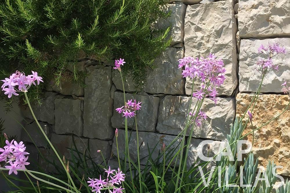 Villa Eze Sur Mer for rent eze sur mer laurence flowers