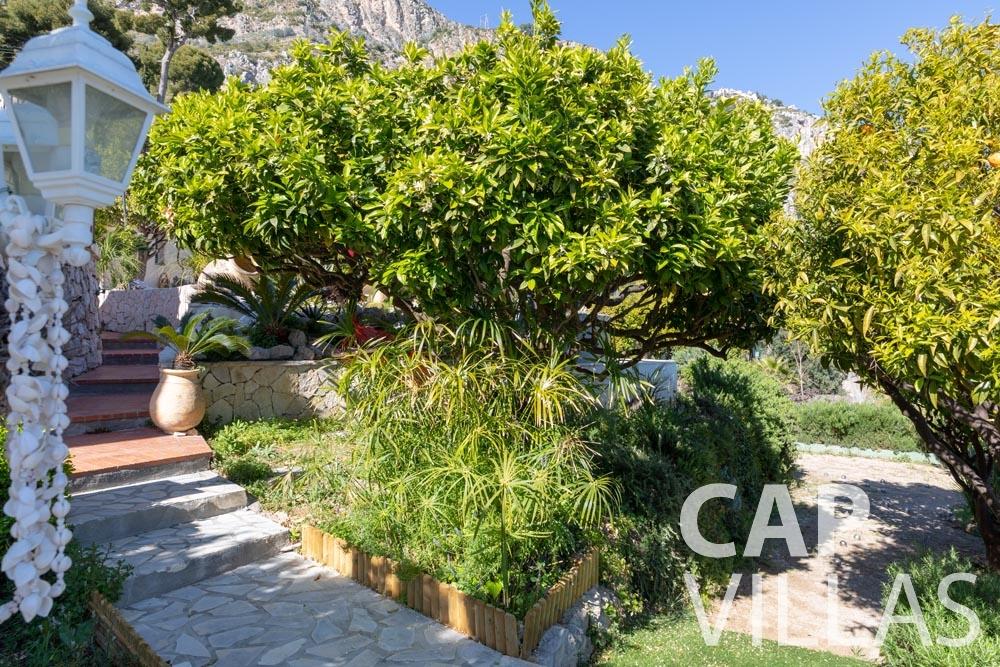 Villa Panarea for rent eze sur mer panarea garden