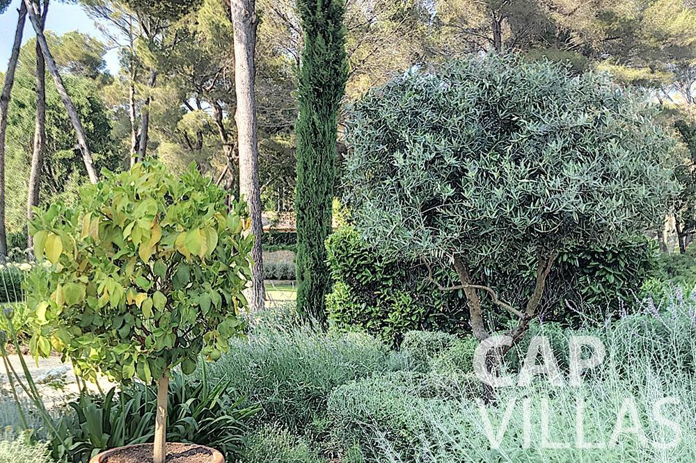 villa for sale moujins valeriya garden