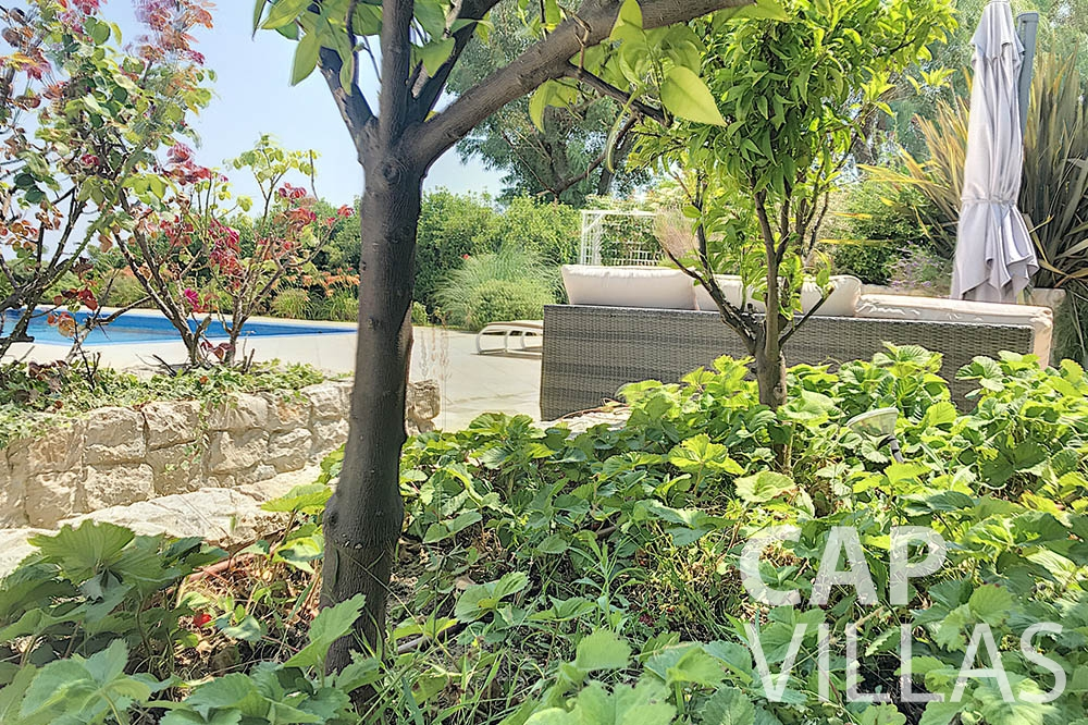 Villa Valéry for rent cap de nice valery garden